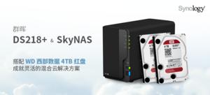群晖 DS218+ NAS & SkyNAS + 西数4TB红盘*2